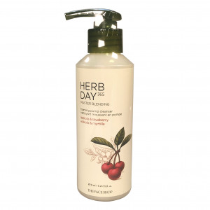 Master Blending Foaming Pump Cleanser Acerola&Blueberry Herb Day 365  The Face Shop