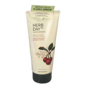 Master Blending Foaming Cleanser Acerola&Blueberry Herb Day 365  The Face Shop