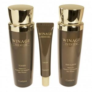 Premium Winage Skin Care Set Coreana